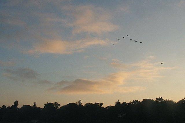 day-dawns
